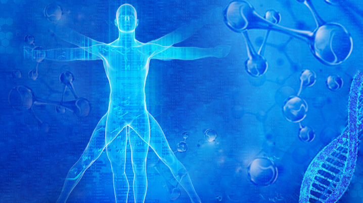 http://www.150smkj.com成体干细胞(MSC)的安全性评价及其临床应用