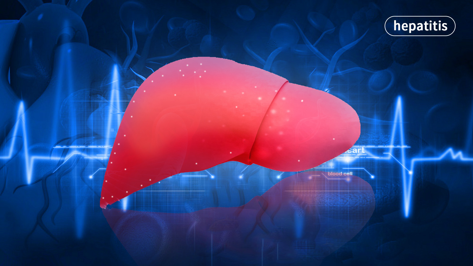 我国科学家在干细胞治疗肝病领域又取得进展
