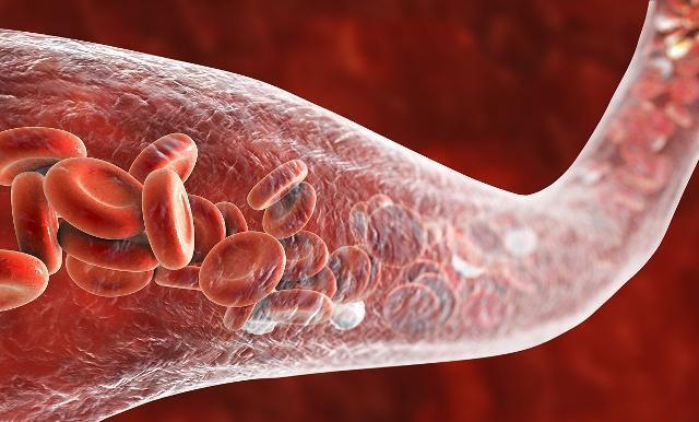 研究新发现,干细胞移植可修复失神经肌萎缩