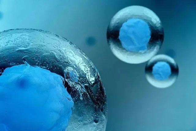 干细胞移植:各类难治性疾病治疗中的关键角色