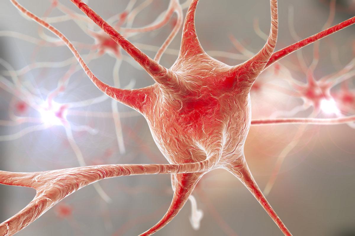 干细胞移植治疗渐冻症,修复神经功能安全有效